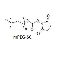 聚乙二醇-琥珀酰亚胺碳酸酯 mPEG-SC (PEG-NHS: Methoxy PEG Succinimidyl Carbonate NHS Ester)